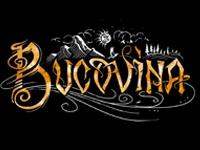 Bucovina Band